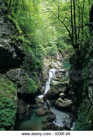 Zatlasice gorge, Tolmin, Triglav National Park, Slovenia - Stock Photo