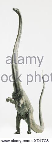 Barosaurus rearing up on its hind legs. - Stock Photo