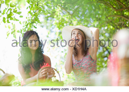 Women picnicking together in park - Stock Photo