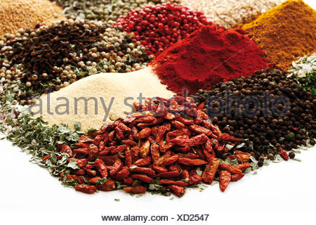 Various spices, peppercorns, bell pepper powder, dried chili peppers - Stock Photo