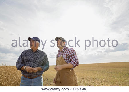 Farmers standing in sunny wheat field - Stock Photo