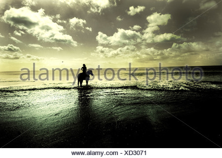A figure sitting on a horse in the sea - Stock Photo