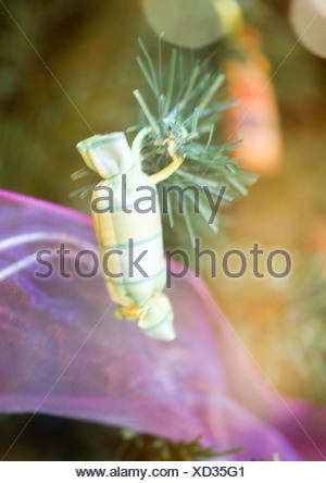 Christmas decoration on tree, close-up - Stock Photo
