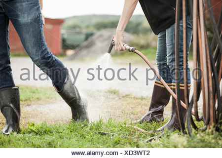Low section of woman spraying water from hose on man's leg on farm - Stock Photo