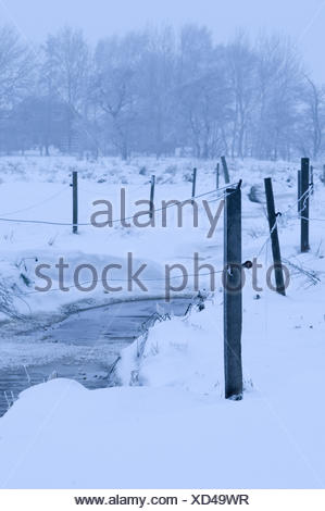 enclosed pond vertikal - Stock Photo