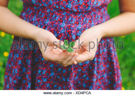 Finland, Helsinki, Aggelby, Mid section shot of woman holding four-leaf clover - Stock Photo