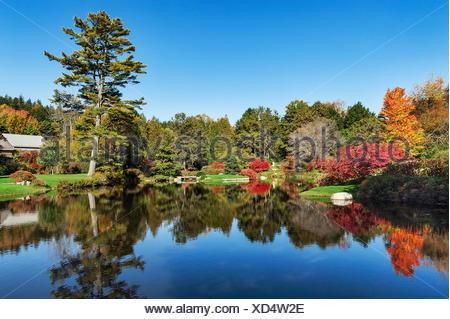Asticou Azalea Garden, Northeast Harbor, Maine, USA - Stock Photo