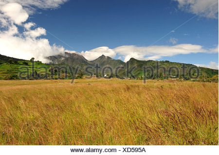 Landscape, Volcan Baru, Panama, Central America, field - Stock Photo