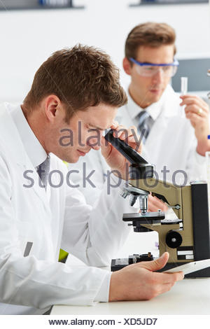 Technicians Carrying Out Research In Laboratory - Stock Photo