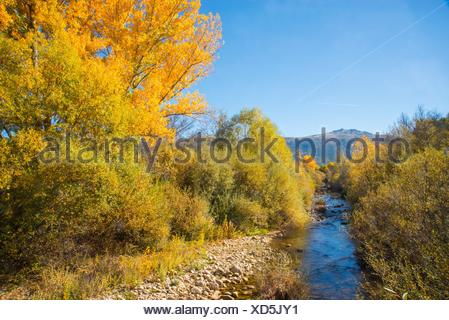 Landscape in Autumn: river Lozoya and Peñalara peak. Sierra de Guadarrama National Park, Rascafria, Madrid province, Spain. - Stock Photo