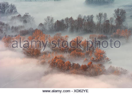 Atmosphere on the banks of the river Adda, province of Lecco, Airuno, Italy, - Stock Photo