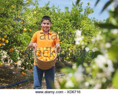 Boy showing basket full of oranges - Stock Photo