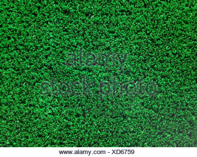 Artificial Turf Background - Stock Photo
