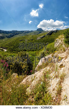 Falaise de Cugens, Falaise, rocks, landscape, summer, mountains, hills, Sainte Beaume, Bouches du Rhone, France, Europe, - Stock Photo