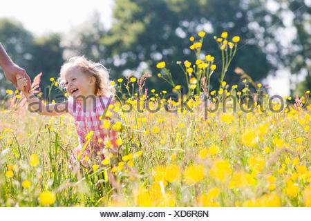 Portrait of smiling young girl holding fathers hand in wildflower meadow - Stock Photo