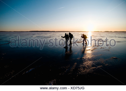 Long-distance skaters against clear sky - Stock Photo