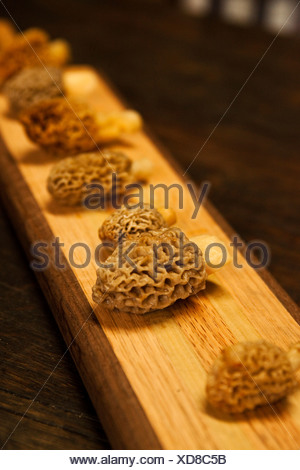 Freshly picked morel mushrooms lay on a cutting board in Montana. - Stock Photo