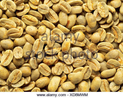 top view of green coffee beans background - Stock Photo