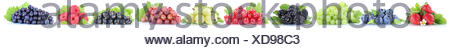collection berries fresh grape grapes strawberries blueberries raspberries fruits in a row - Stock Photo