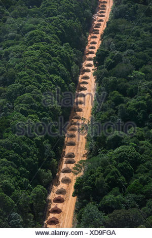 Dirt road running  through tropical rainforest, Guyana South America - Stock Photo