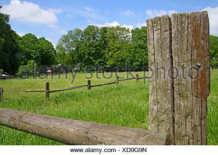 paddock and old wooden fence, Germany, Nordrhein Westfalen, Ruhr Area, Essen - Stock Photo