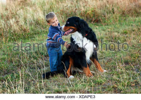 Toddler boy (18-23 months) with big dog - Stock Photo