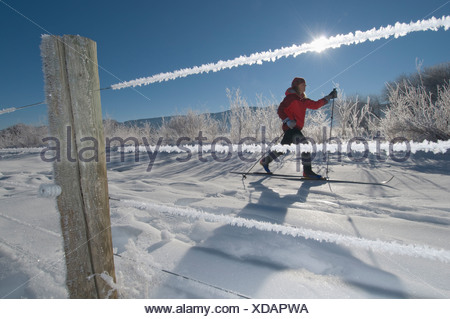 A woman cross country skiing next to frost covered fence in the Animas River Valley, Durango, Colorado. - Stock Photo