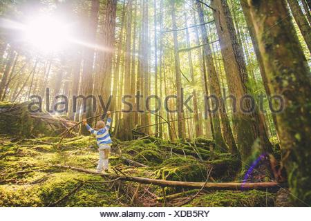 Young boy (4-5) balancing on log in forest - Stock Photo