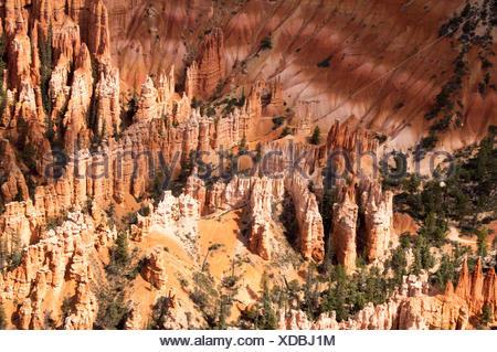 Amphitheatre of Bryce Canyon, USA, Utah, Bryce Canyon National Park - Stock Photo