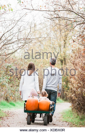 Parents pulling toddler children and pumpkins on wagon in park - Stock Photo