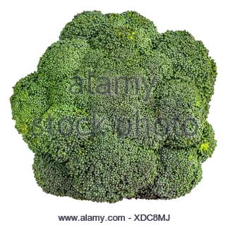 Large inflorescences of fresh broccoli top view isolated on white background. - Stock Photo