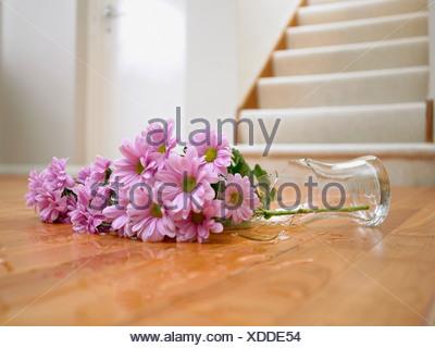Broken Vase Of Flowers On Floor Stock Photo 25652392 Alamy