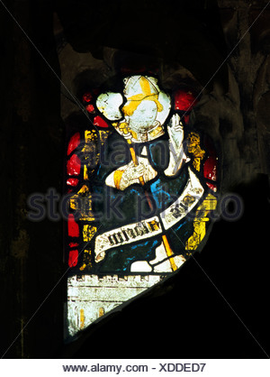 Wiggenhall St. Mary Magdalene, Norfolk, St. Aldhelm, Bishop of Shernbourne, d. 709 AD English medieval stained glass window - Stock Photo