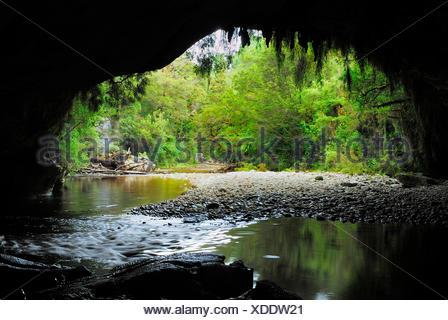 Moria Gate Arch and Oparara River, New Zealand, Southern Island, Kahurangi National Park, Oparara Basin - Stock Photo