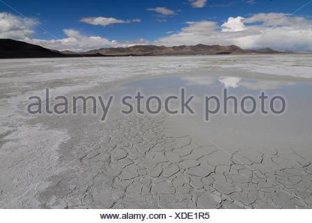 Salt lake in the Drangyer salt field, Drangyer Tsaka, in the Changtang high plateau, Western Tibet, Ngari Province, Tibet, China - Stock Photo