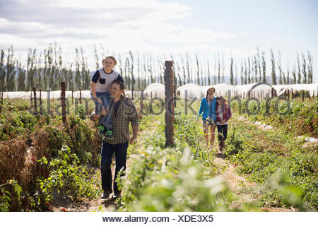 Family walking in sunny rural crop field - Stock Photo