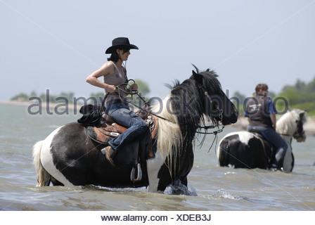 bathing with horse - Stock Photo