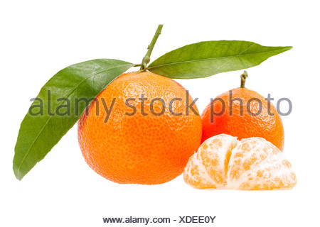 Fruits of clementine isolated on white background - Stock Photo