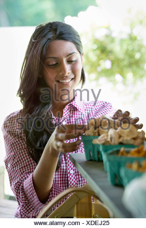 Farm stand organic vegetables. A woman sorting fresh mushrooms. - Stock Photo