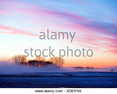 sunset over meadows Hammewiesen, Germany, Lower Saxony, Osterholz - Stock Photo