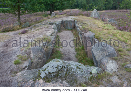 Oldendorfer Totenstatt. Neolithic burial mound near Amelinghausen. Lueneburg Heath, Lower Saxony, Germany - Stock Photo
