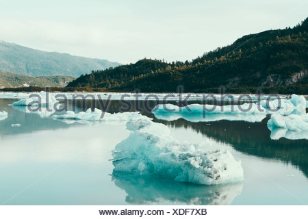 Icebergs floating off the shore at the end of the McBride Glacier, off Alaska. - Stock Photo