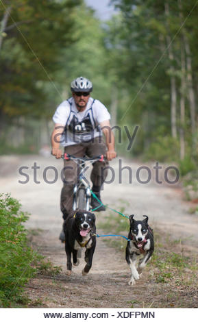 Dog Bikejoring Canada