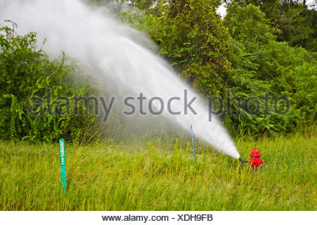 A fire hydrant releases water pressure from heavy rains due to Hurricane Isaac. - Stock Photo