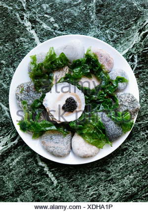 Plate of oysters with caviar and seaweed - Stock Photo