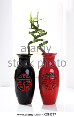 Lucky Bamboo In Japanese Vases Stock Photo 25324145 Alamy