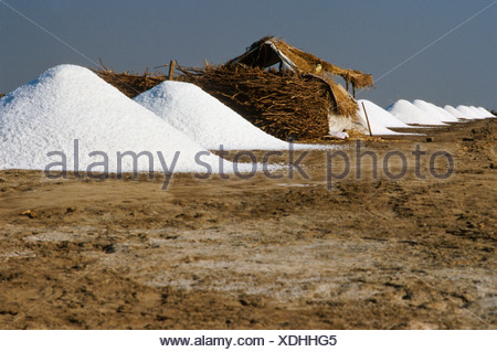 Simple huts right next to the saltpans where the labourers live, Malya, Gujarat, India, Asia - Stock Photo