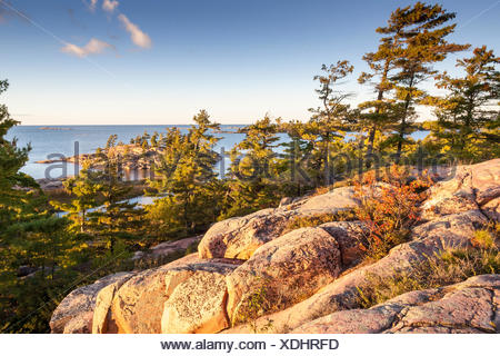 Pink granite and windswept trees of Georgian Bay as viewed from the Chikanishing Trail in Killarney Provincial Park, Ontario, - Stock Photo