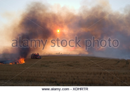 Wheat stubble being burned after the harvest to control diseases, reduce weed competition and to make the next planting easier. - Stock Photo