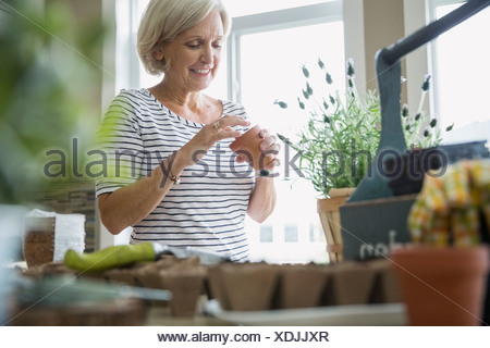 Woman planting seeds in flowerpot - Stock Photo